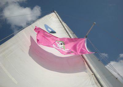 2016 - Pink Flag under sail close up